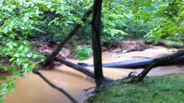 Jake Donaldson, 12, was found in Piney Branch Creek behind his house duirng Thursday night's flash flood storms.