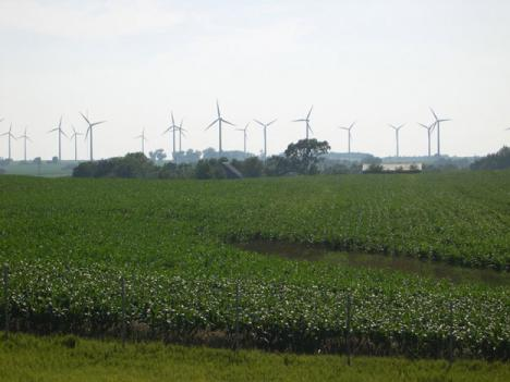 Officials in Garrett County, Md. were previously on board with on-shore wind farms, such as the one shown here in Illinois. But now that some of them have been built, a new swath of lawmakers are changing the county's path.