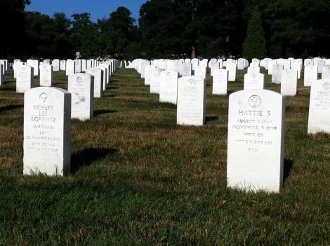 Hundreds of volunteers are heading to Arlington Cemetery today to do supplemental landscaping work to beautify the military burial ground.