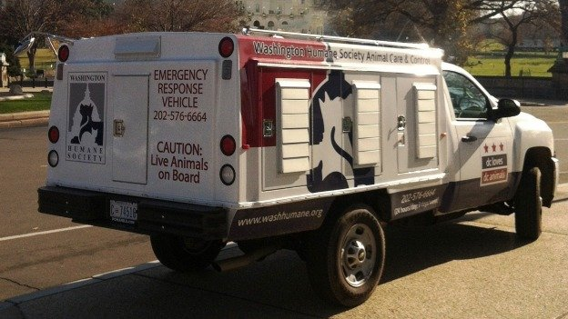 Washington Humane Society's emergency response vehicles are equipped with flashing yellow lights, but not the emergency lights and sirens that other emergency responders in the District have.